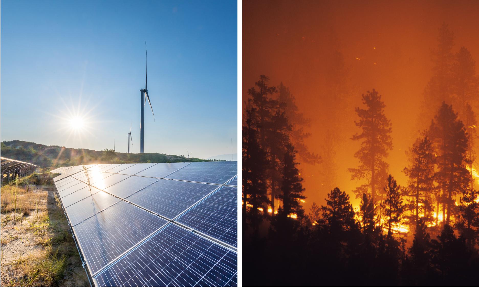 solutions manual for environmental economics charles d kolstad
